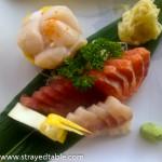 Sakana Sushi Bar, Mooloolaba