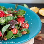 Strawberry Salad w Vanilla Lemon Dressing