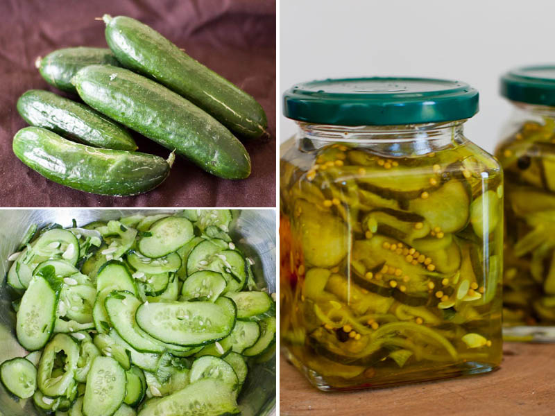 Bread and Butter Pickles – Recipe