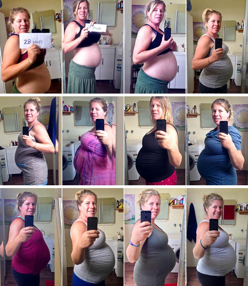 12 week progress pregnancy copy
