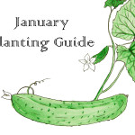 January Planting Guide – FREE Download