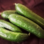 Cucumber  :  Plant Profile