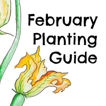 February Planting Guide – Free Download