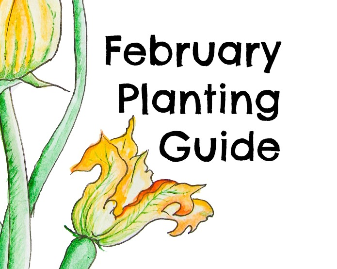 Download Free Australian February Planting Guide