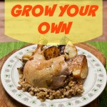 Growing Your Own| Why We Raise Chickens