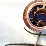 Davidson Plum Jam Recipe