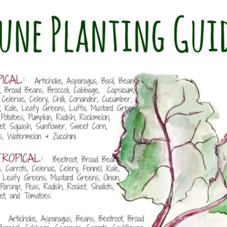 June Planting Chart