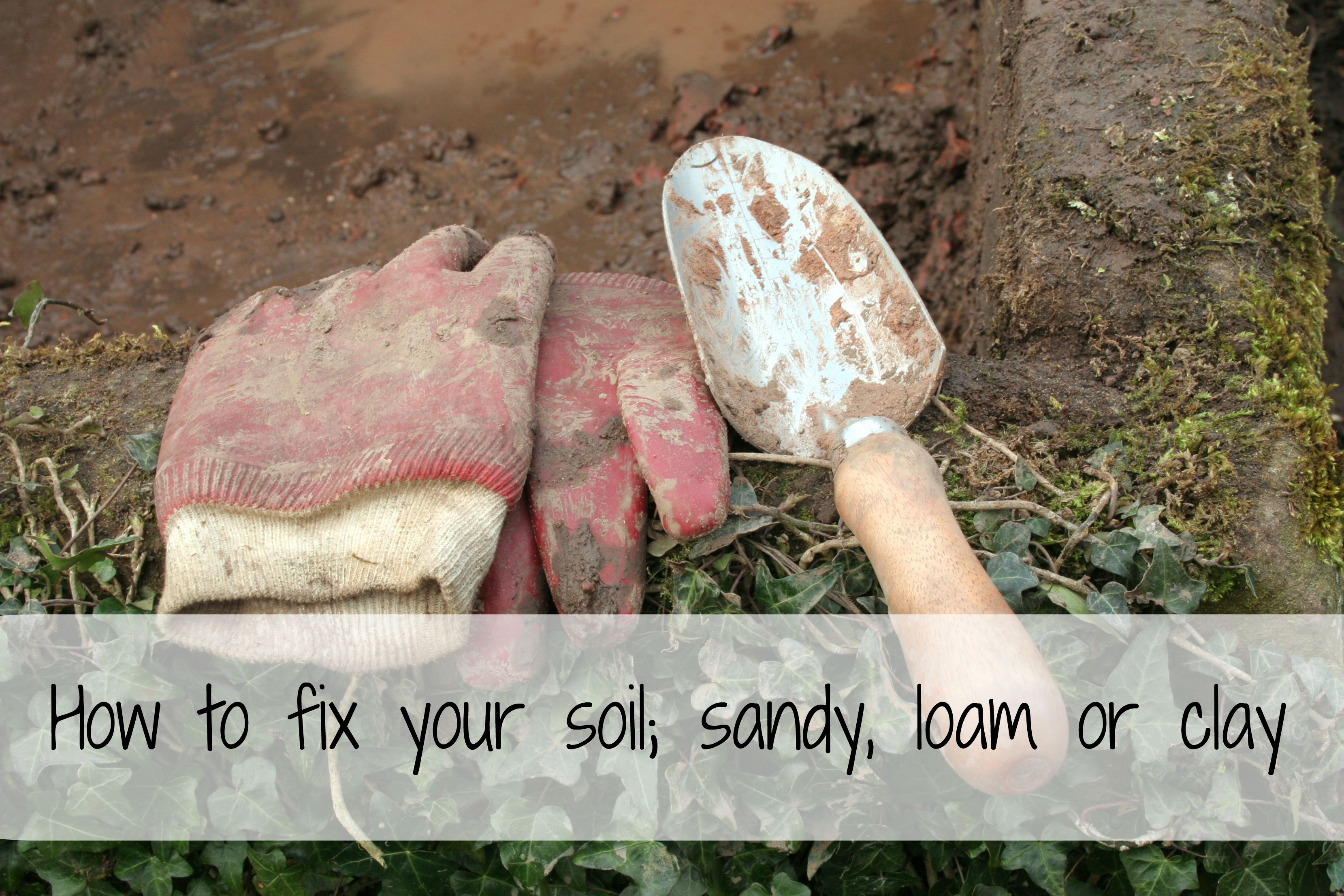How to fix your soil, sandy, loam or clay