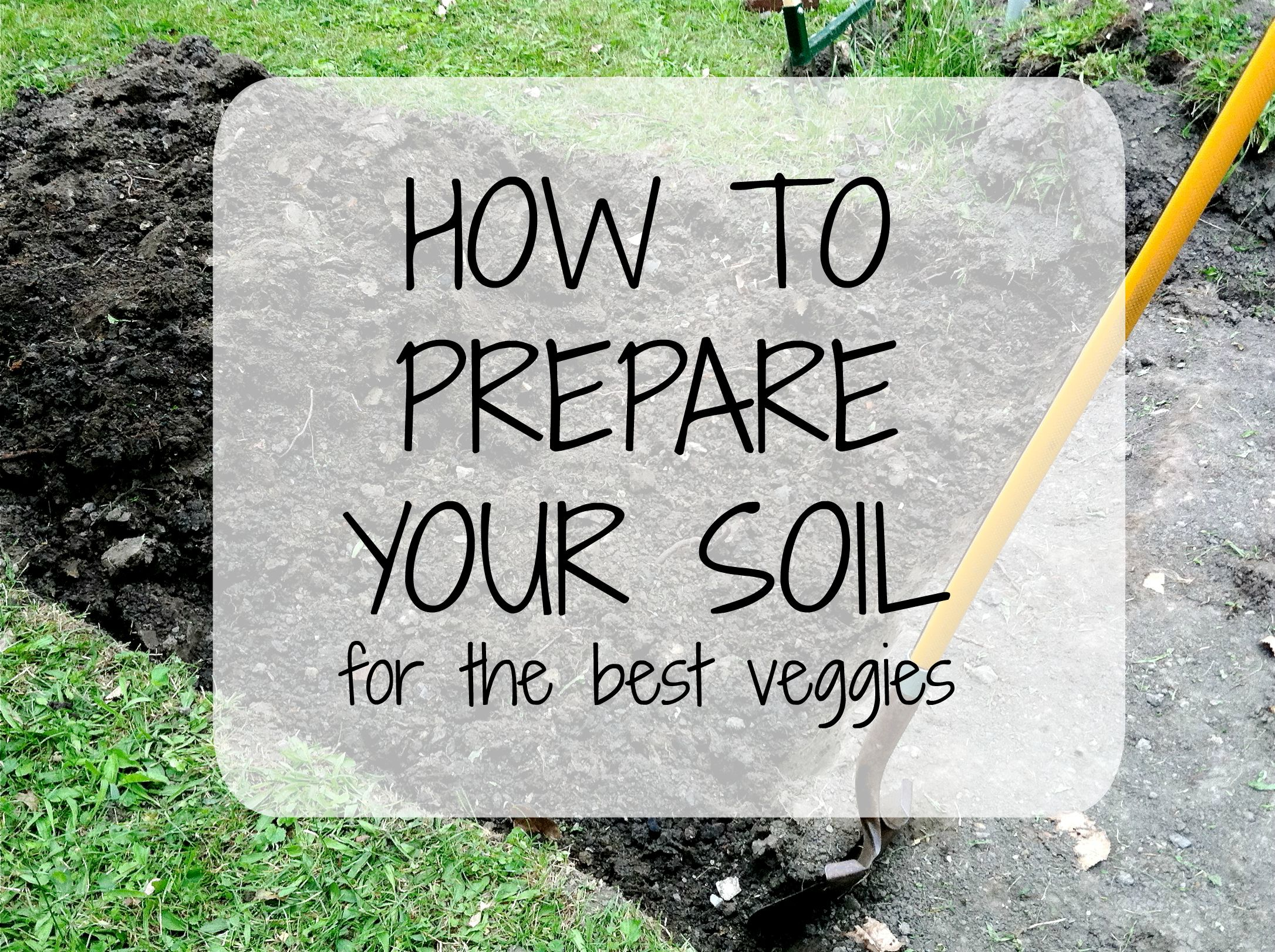 How to prepare your soil for the best veggies