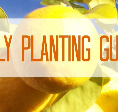 July Planting Guide