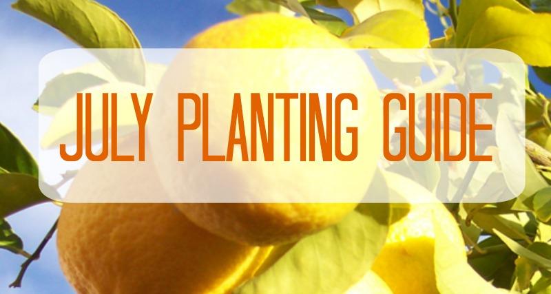 Australian JULY Planting Guide