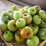 Garden Share Collective : July 2015