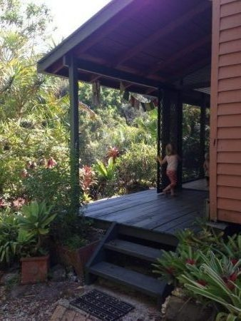 Living Off-Grid in the Rainforest